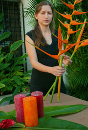 Heliconia lutea and other exotic beatiful flowers grace many wedding parties at the Hacienda