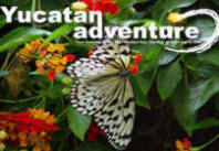Yucatan Adventure Volunteer Programs and Travel Guide, Chichen Itza, Mexico