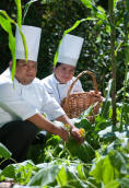Mayan Cooking at its best with Chef Josue Cime of Hacienda Chichen Resort