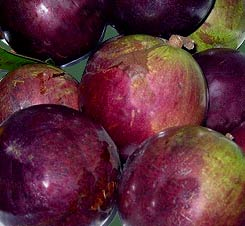 Caimito is a Star Apple tropical fruit flavor makes great smoothies