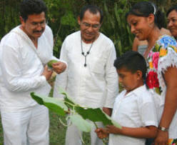 Mayan Traditions, Rituals, Ceremonies, Herbal Medicine - Yucatan, Mexico