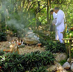 Mayan High Priest Ildefonso Ake Cocom celebrating a mystical Mayan Ceremony in Hacienda Chichen Sacred Ritual Site.